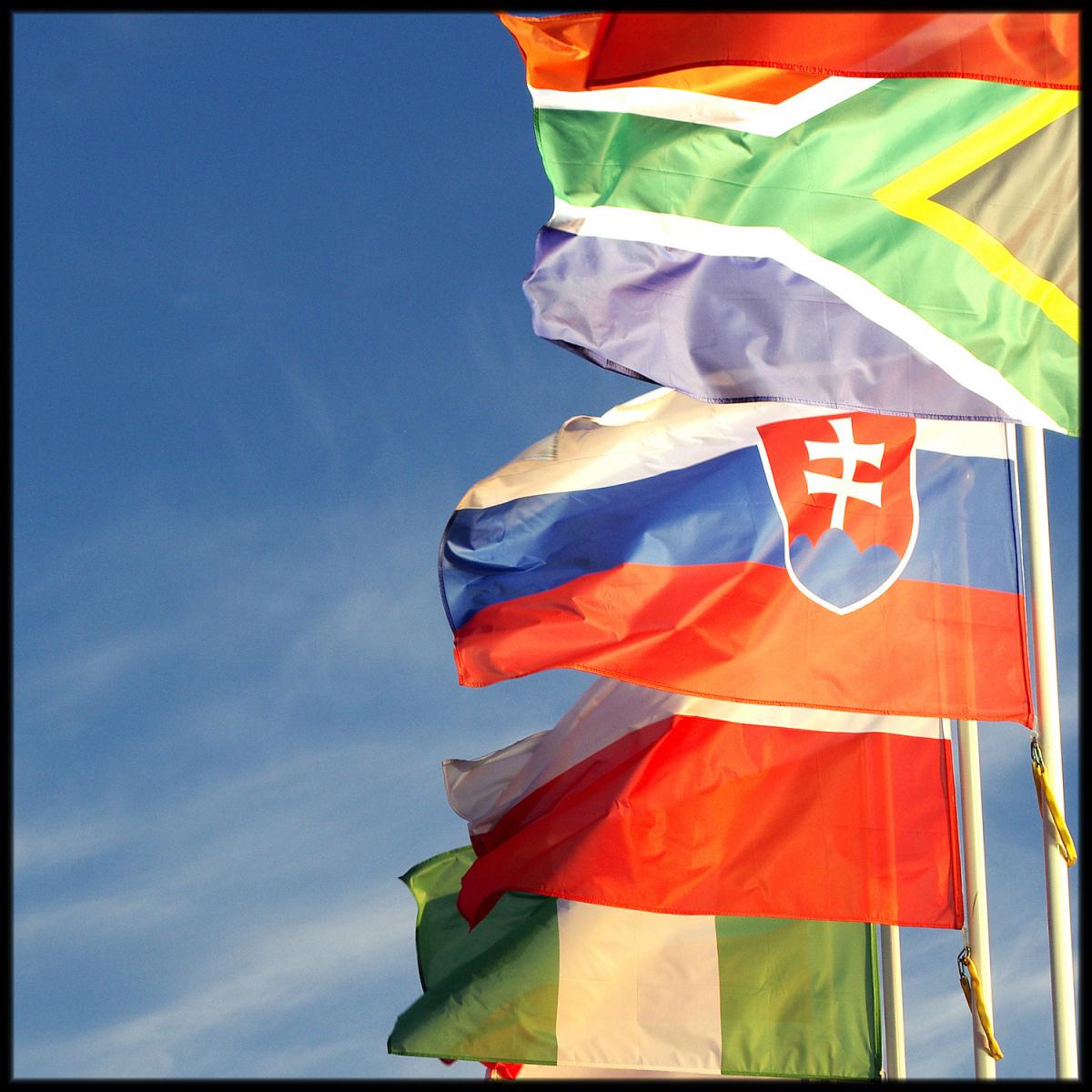 Flags-Sandra-Sergeant-Photography-Basingstoke-Passport-Photographs