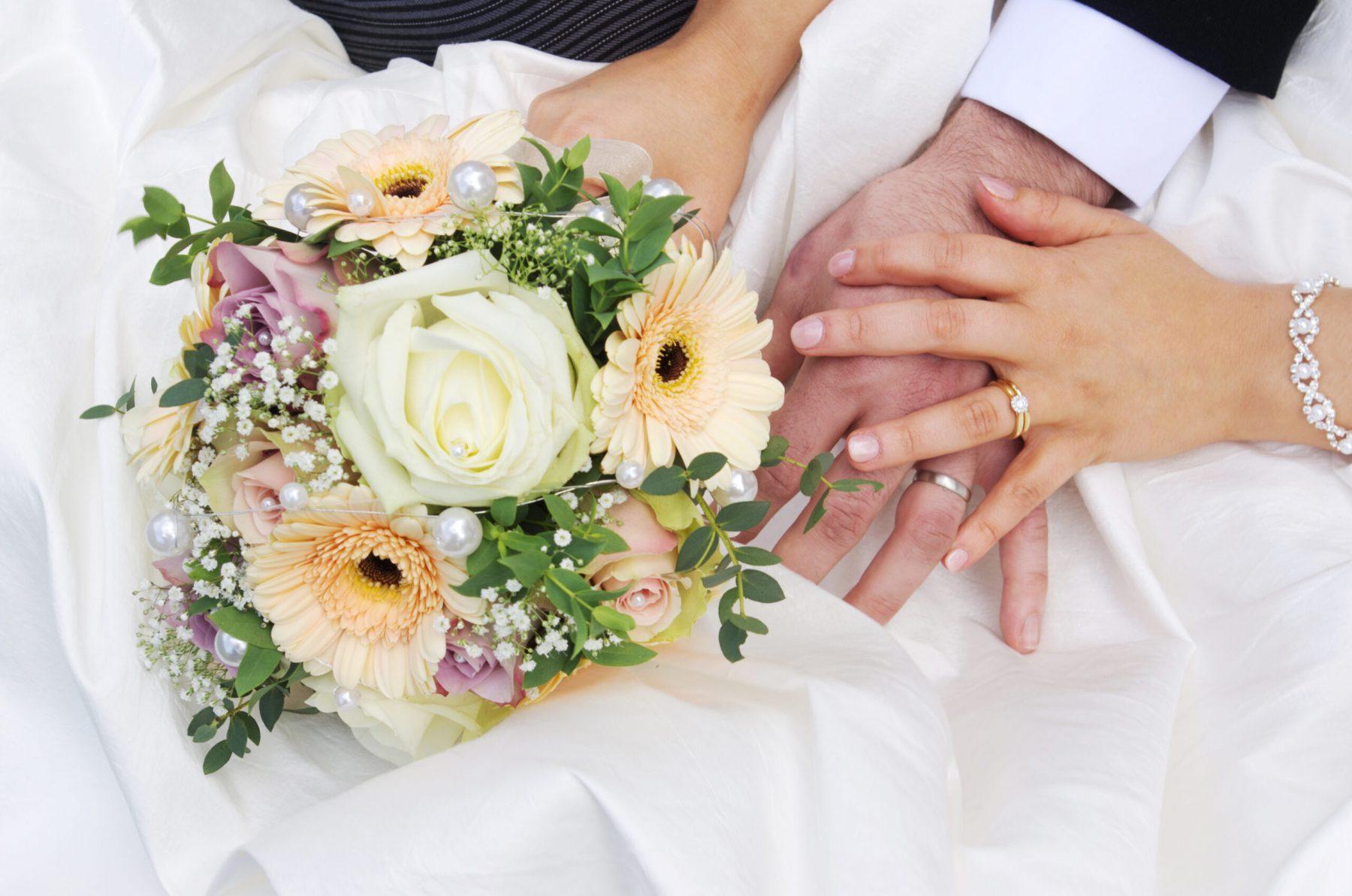 Amazing flowers - Sandra Sergeant Photography Basingstoke
